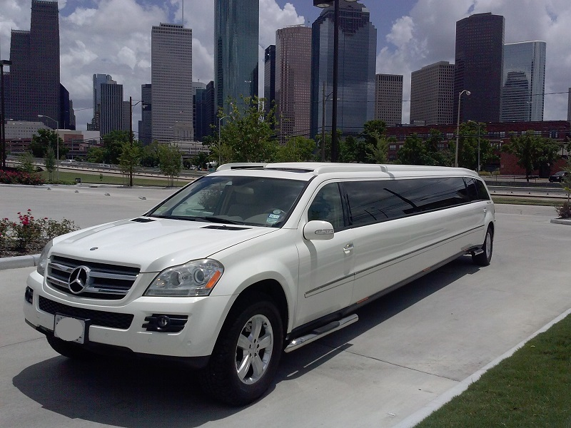 North star 20 passenger mercedes benz limo service for Mercedes benz limousine rental