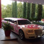 you can have a bachelorette party in a limo