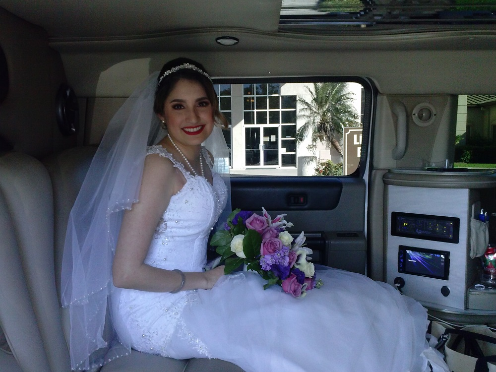 Beautiful Bride (2)
