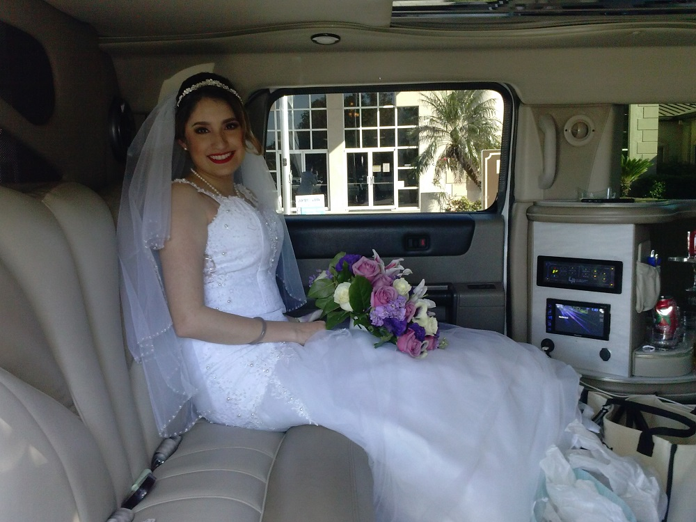 Beautiful Bride (3)